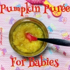 Pumpkin Puree for Babies