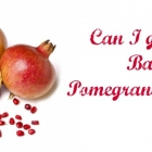 Can I give my Baby Pomegranate Juice ?