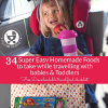 34 Easy Homemade Travel Food Ideas for Babies and Toddlers