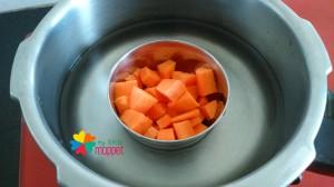 Carrot Puree 3