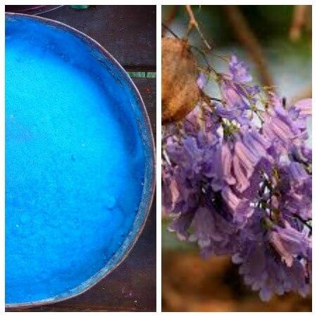 blue color homemade holi powder recipe