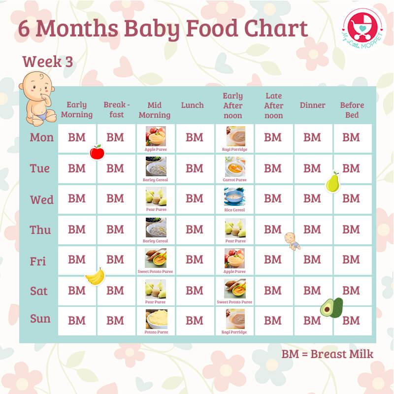 6 months food chart